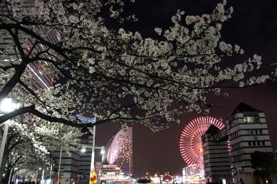 Yokohama2