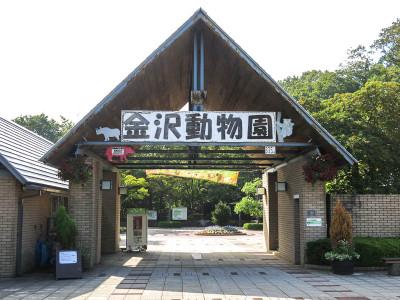 Kanazawaroller1