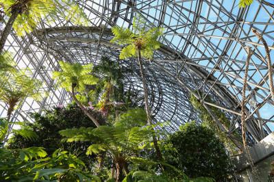 Botanicalgarden4