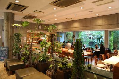 Botanicalgarden9
