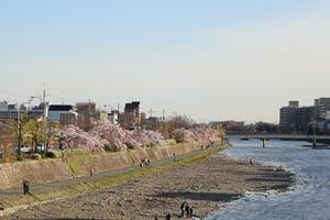 Kyoto5_2